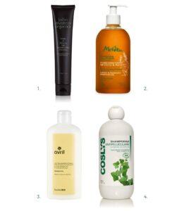 quel est le meilleur shampoing bio
