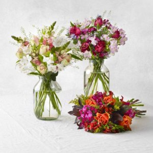 bloom and wild box fleurs