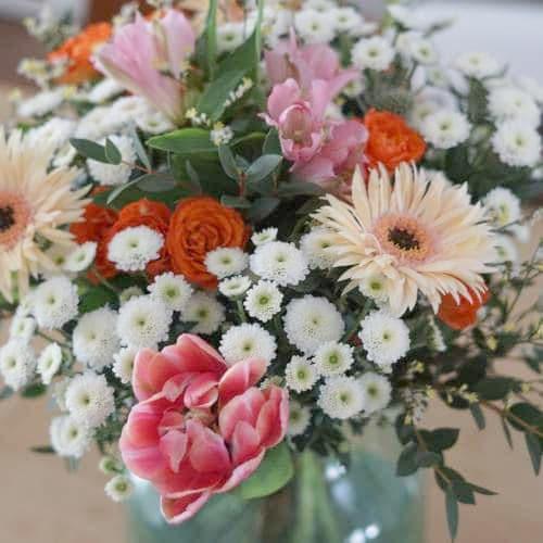 bloom wild fleurs